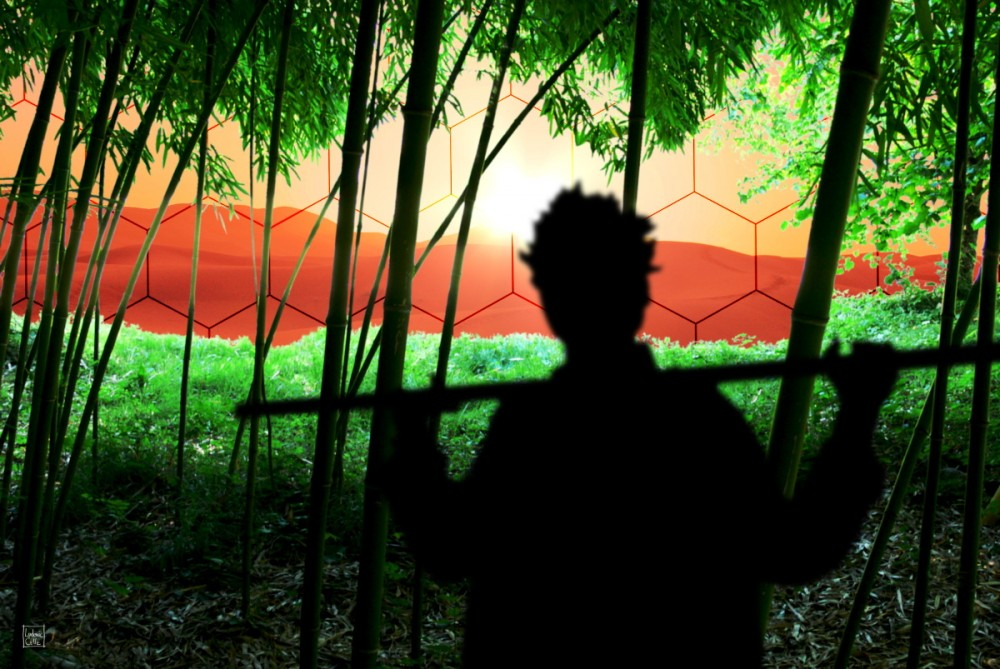 Bamboo Culture On Mars